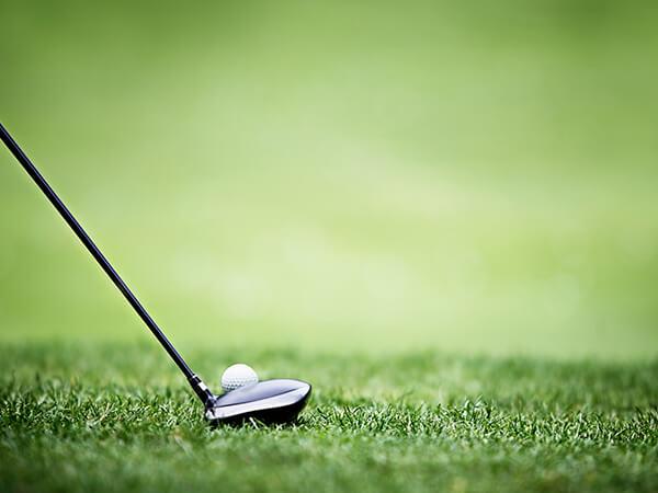 golf performance and swing analysis program